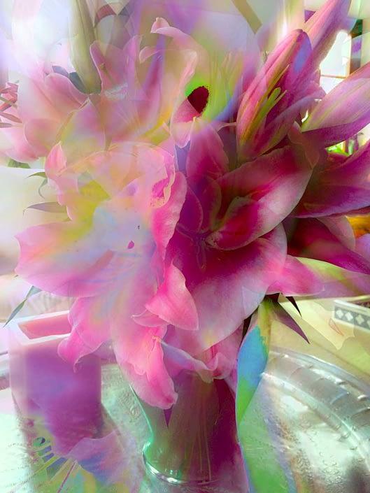 lilies stanko mystical photo