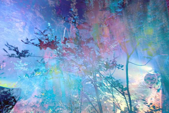 wunderwald - stanko mystical photo