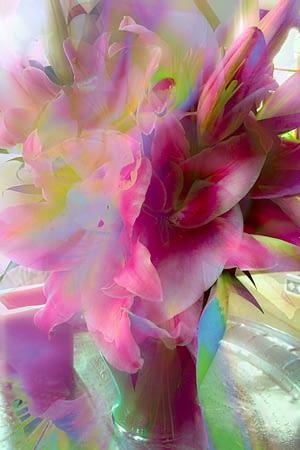 lillies-print-120x180cm