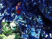 blue-hall-il-giardino-dei-tarrochie--nikki-de-saint-phalle